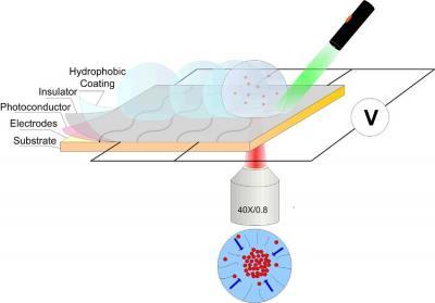 New method manipulates particles for sensors, crime scene testing