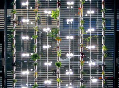 Windowfarms unveils new garden kits that grow up to 32 for Indoor natatorium design and energy recycling