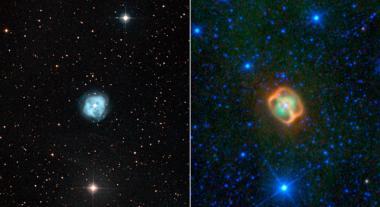 WISE image reveals strange specimen in starry sea