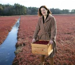 WPI research shows how cranberry juice fights bacteria at the molecular level