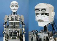 Robots provide insight into human perception